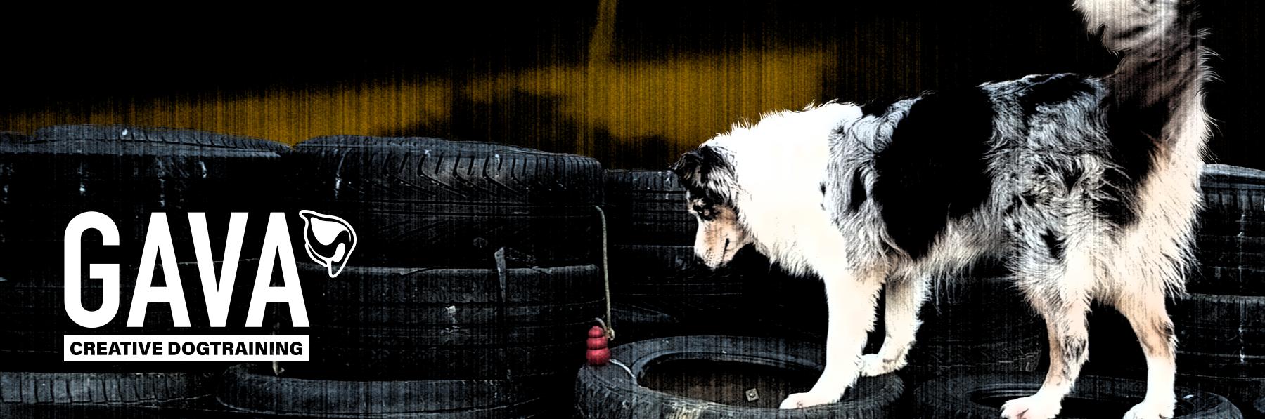Gava Hund.